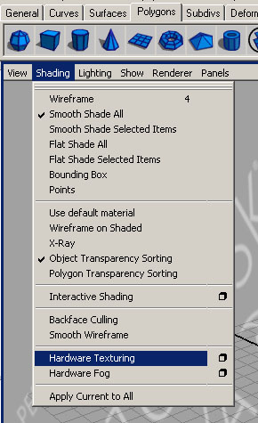 Select Shading > Hardware Texturing (click the text)