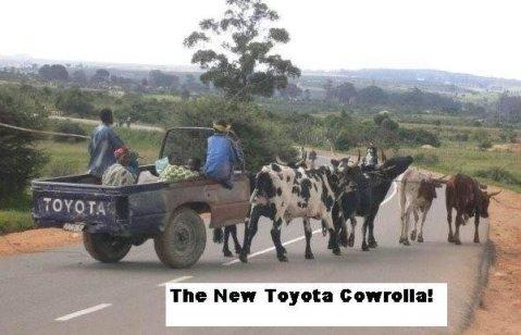 Toyota Cowrolla