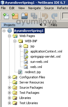 06 Netbeans Initial Project Files