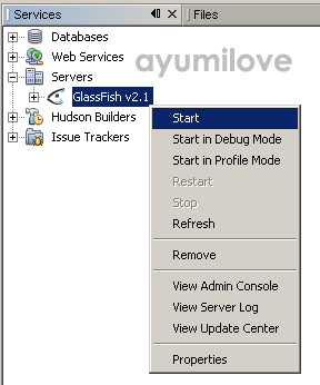 09 Netbeans GlassFish Start Server