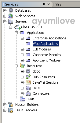 10 Netbeans GlassFish Server Enabled